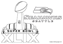 Super Bowl XLIX Seattle Seahawks
